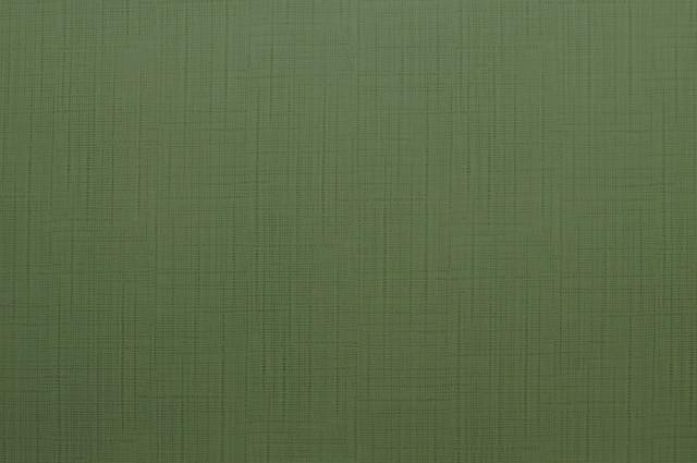Flax apple 1404
